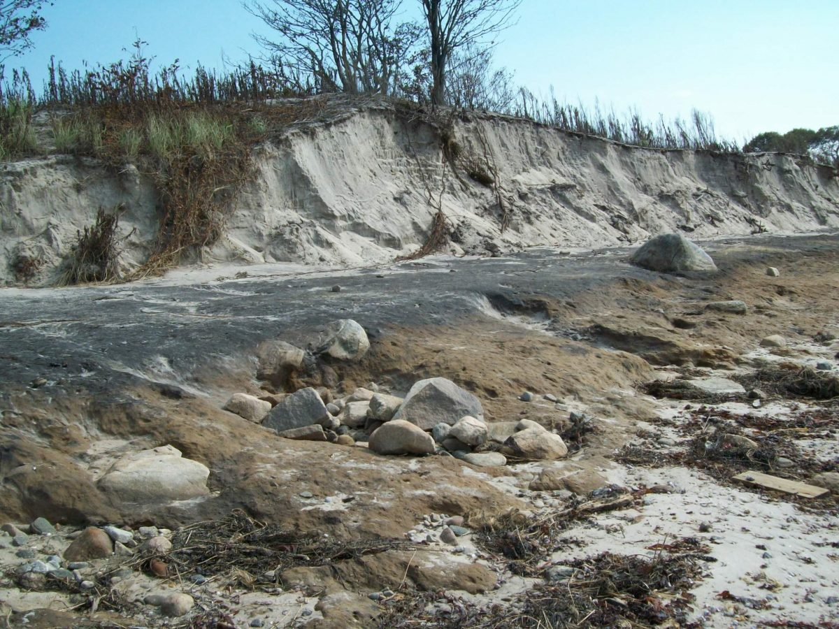 Dune loss at Harkness Beach. Photo: Micheal P. Grzywinski, CT DEEP