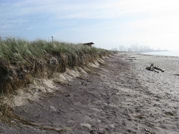 Beach scarp, Waterford CT